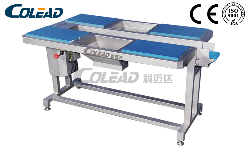 Selecting conveyor for vegetable and fruit