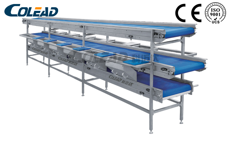 Vegetable and fruit multilayer comprehensive conveyor