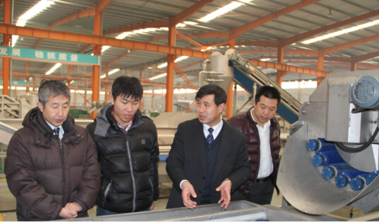 The Japanese businessmen visit COLEAD fruit and vegetable equipment to observe equipment