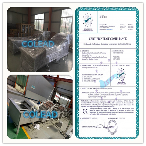 Salad processing line from Asia Customer